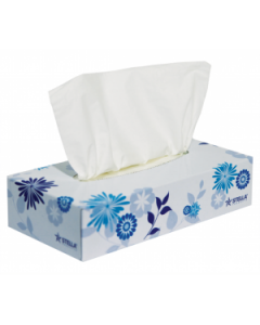 Tissues 2Ply Box 100 Sheet Stella 225 ctn 48