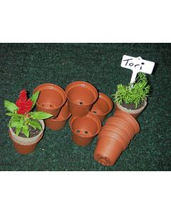 Mini Terracotta Pots Recyclable Pack of 30
