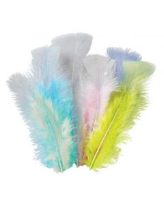 Feathers Pastel Assorted 10g
