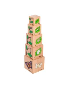 Lifecycle Wooden Blocks 5pc