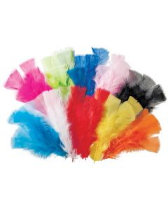 Feathers Large 60gm Pk240