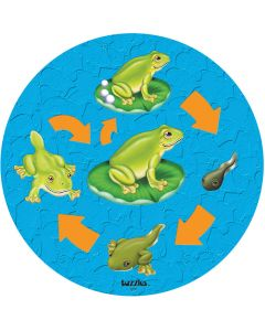 Life Cycle Frog Puzzle
